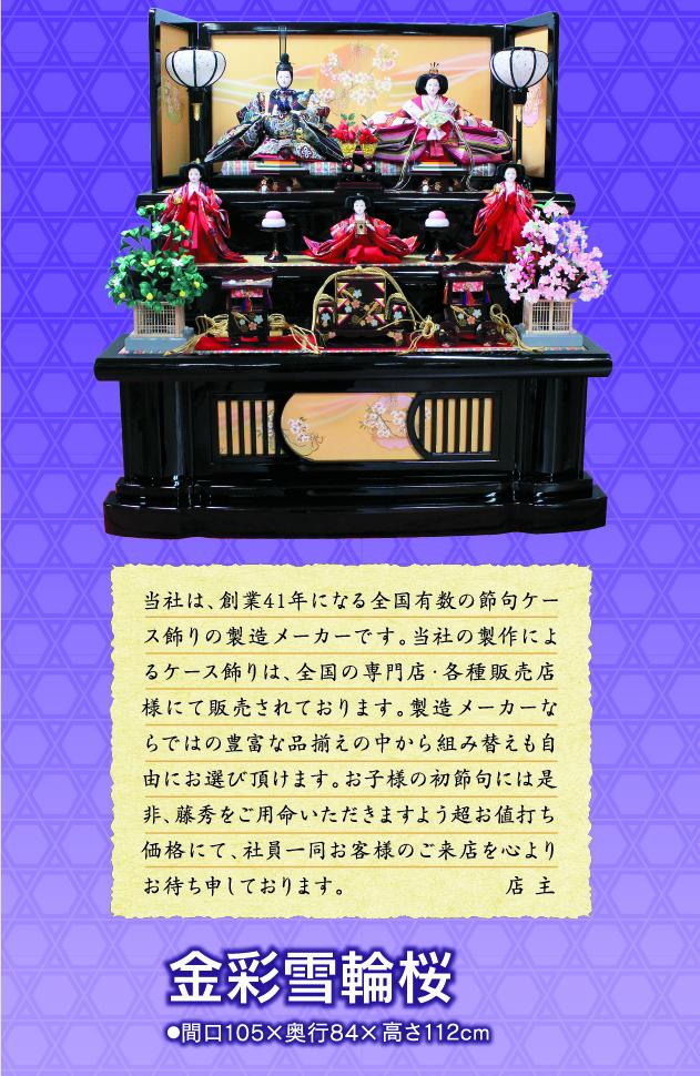 16年連続第1位 金彩雪輪桜